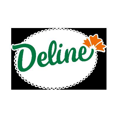 https://pravoce.nordestao.com.br/Deline